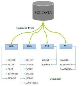 command types in SQL DataBase
